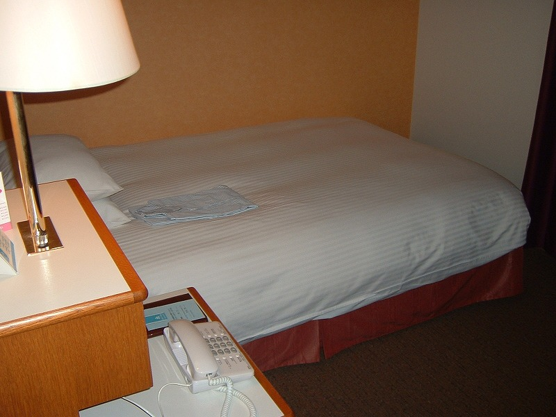 イタリア旅行記(成田空港周辺ホテルで前泊)